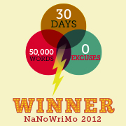 NaNoWriMo 2012 Over For Another Year!